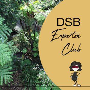 DSB Experten Club